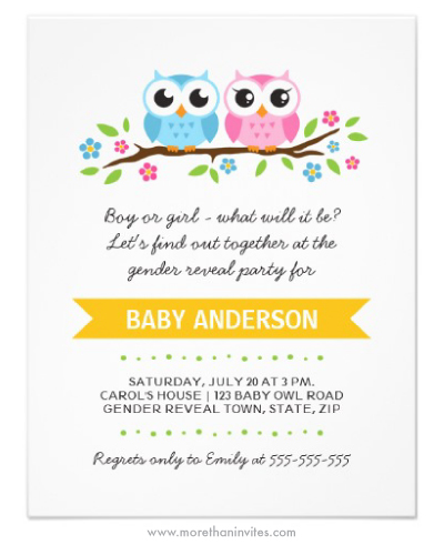 Cute pink and blue cartoon owls on floral branch gender reveal party invitation