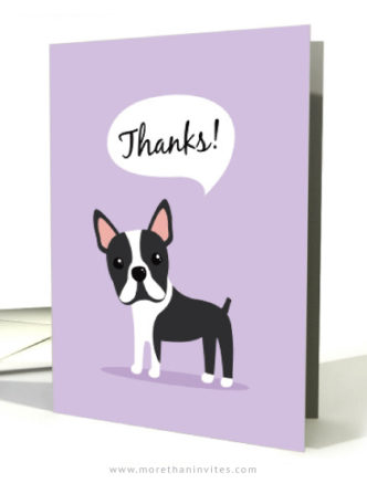 Boston terrier dog thank you cards
