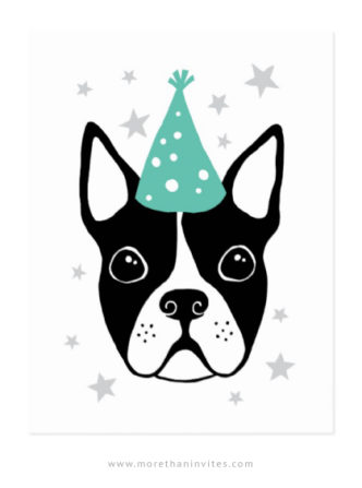 Boston terrier with aqua party hat happy birthday postcards